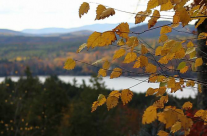 Autumn in New Hampshire/Maine